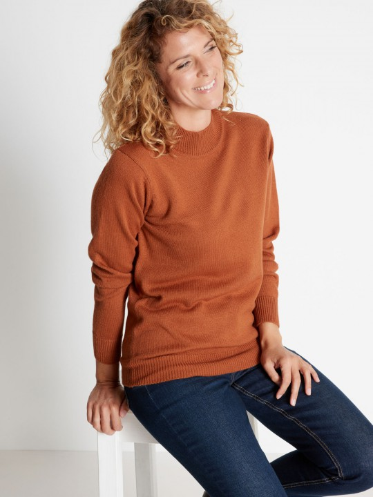 Pull col montant manches longues